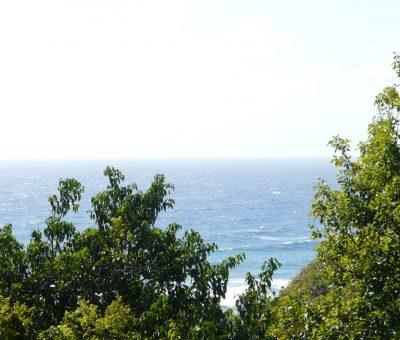 Superbe vue sur la mer, Coccoloba - Location Villa à Marie Galante